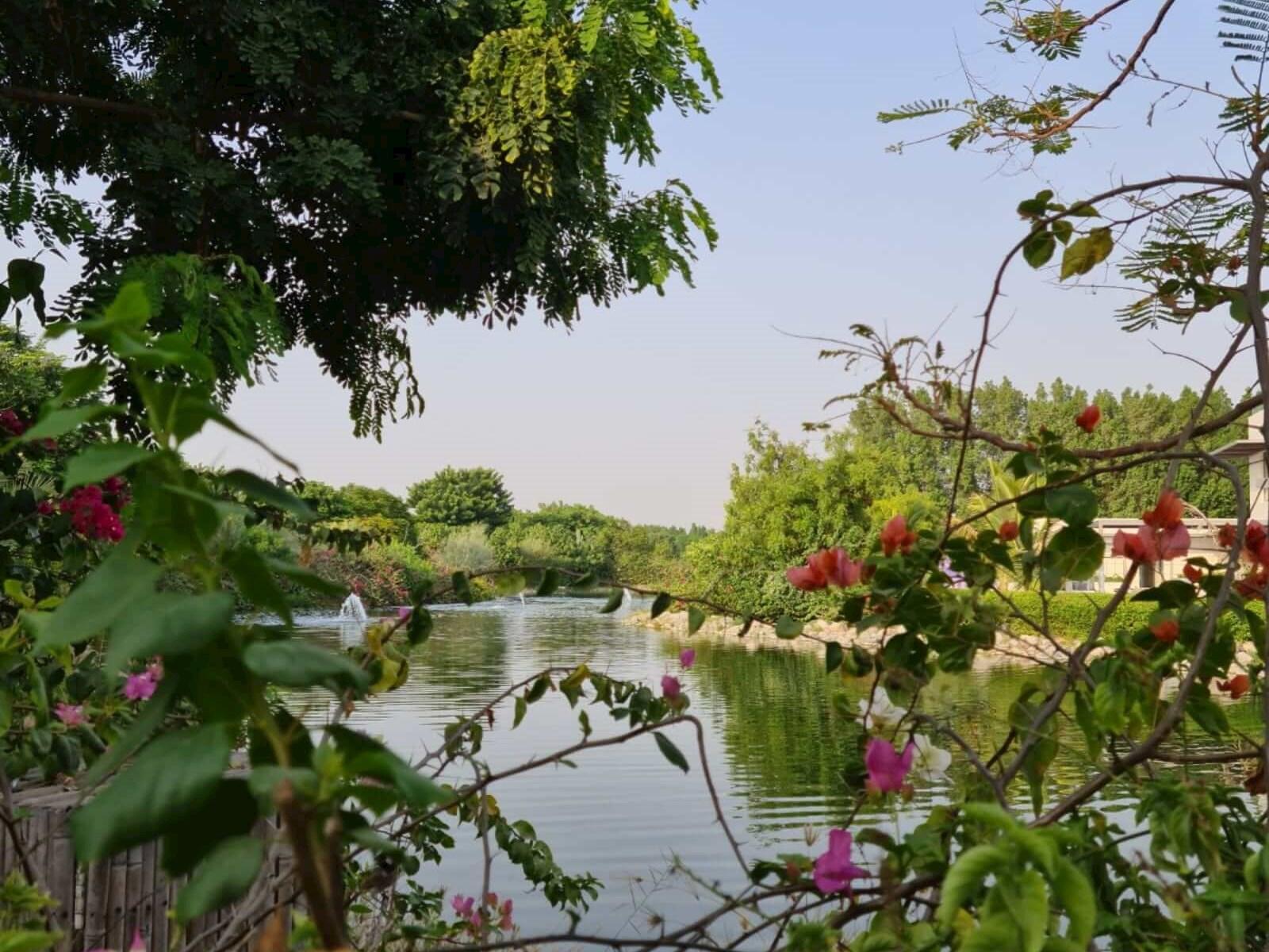 Al Barari Gardens