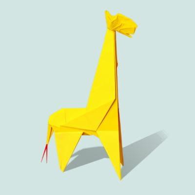 image of a giraffe