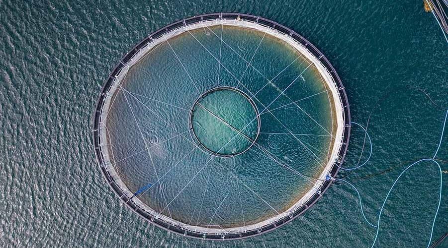 Aerial shot above a circular fish farm in a loch, Scottish Highlands, United Kingdom