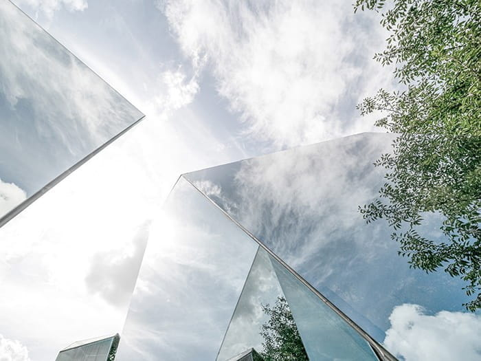 Skyscrapers and trees seen from below