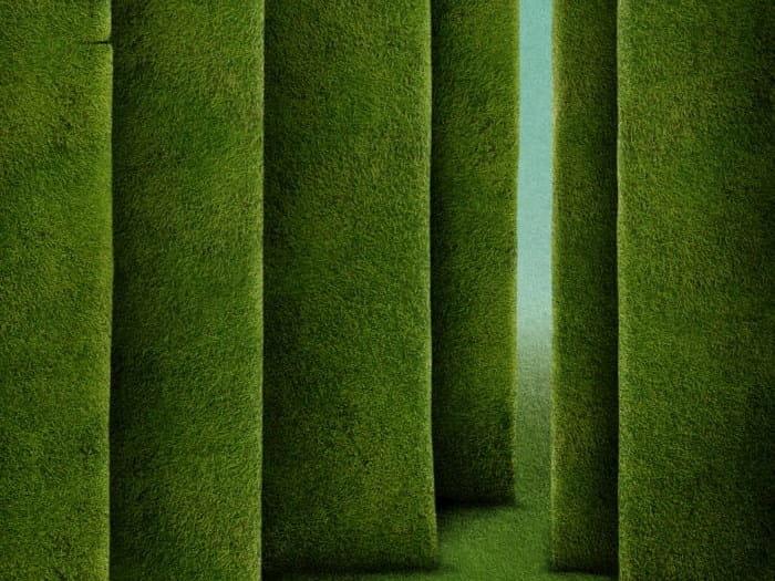Vertical hedges