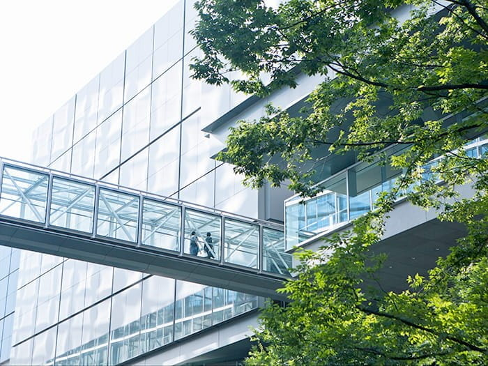 A modern glass office building, two people and a leafy tree