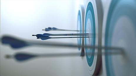 Arrows in bulls' eyes