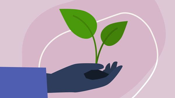 An illustration of a hand holding some soil with a small plant growing out from it.