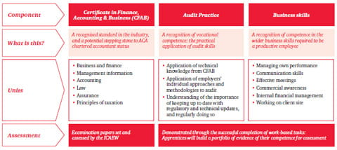 Higher Apprenticeship in Assurance/Audit framework