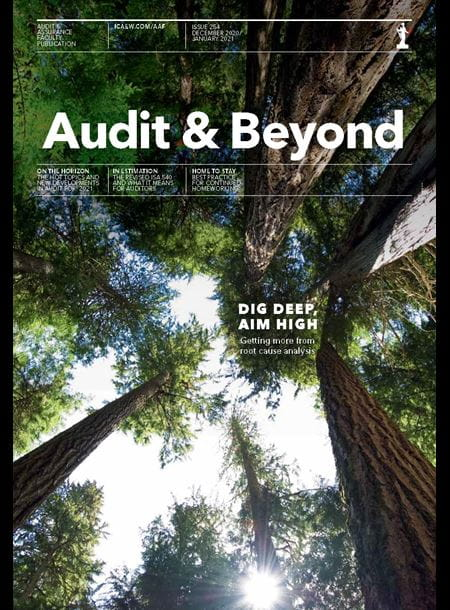Audit & Beyond cover article