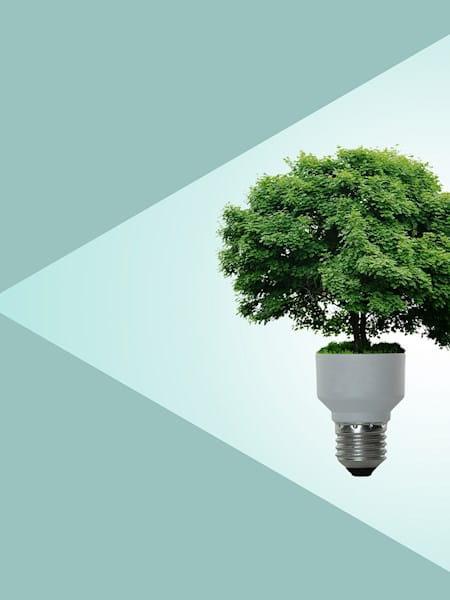Image representing sustainable development goals