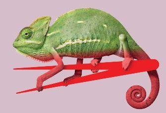 Faculty chameleon
