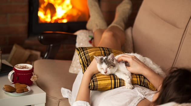 https://economia.icaew.com:443/-/media/economia/images/article-images/630-life-hygge-cat-fireplace-min.ashx
