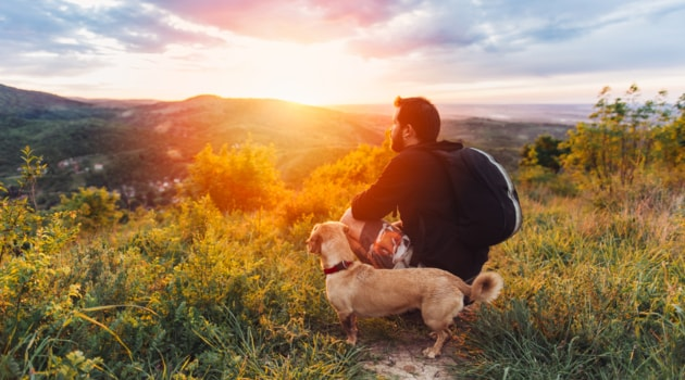 https://economia.icaew.com:443/-/media/economia/images/article-images/630dog-hike-relax-sunset-min.ashx