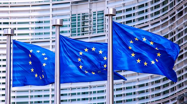https://economia.icaew.com:443/-/media/economia/images/article-images/eu-parliament-2-630.ashx