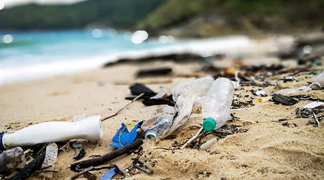 https://economia.icaew.com:443/-/media/economia/images/article-images/plasticpollution630.ashx