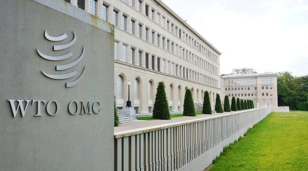 https://economia.icaew.com:443/-/media/economia/images/article-images/world-trade-organization-630.ashx